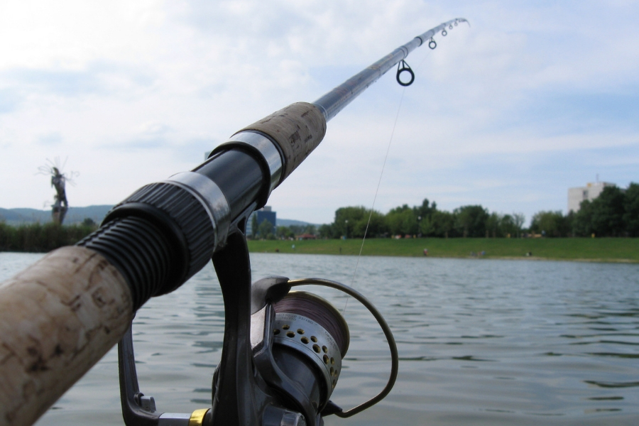 Best Fishing Rods Available Today from Mike D Fishing